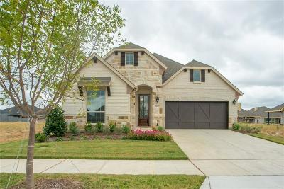 Little Elm Single Family Home For Sale: 7017 Prairie Grass Way