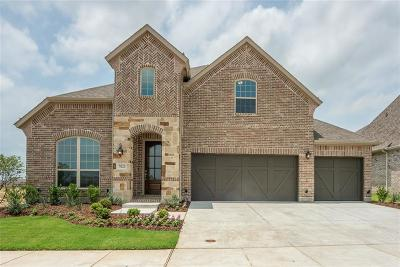 Little Elm Single Family Home For Sale: 7021 Cross Point Lane
