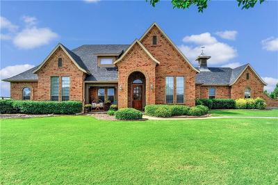 Dallas County, Denton County, Collin County, Cooke County, Grayson County, Jack County, Johnson County, Palo Pinto County, Parker County, Tarrant County, Wise County Single Family Home For Sale: 8 Buckskin Drive
