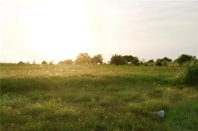Wise County Residential Lots & Land For Sale: 191 Vista Ridge N