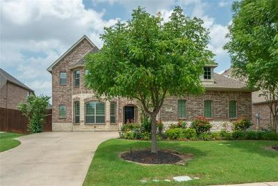 Allen Single Family Home For Sale: 958 Falcon Drive