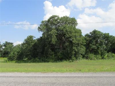 Millsap Residential Lots & Land For Sale: Wolf Hollow