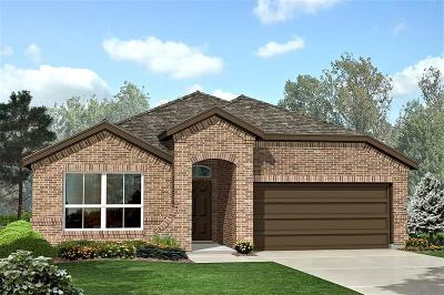 Fort Worth Single Family Home For Sale: 9520 Blaine Drive