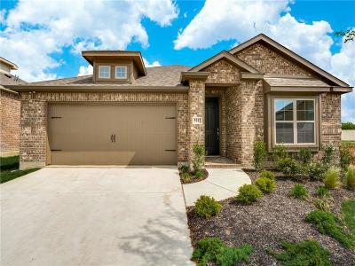 Anna Single Family Home For Sale: 1229 Sharp Street