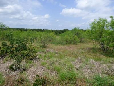 Wise County Residential Lots & Land For Sale: 2 Lots Three Forks Crossing