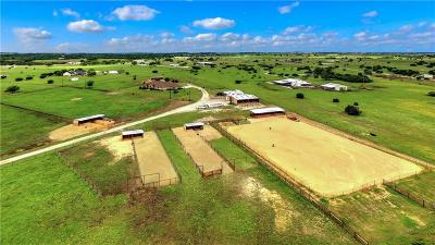 Weatherford Farm & Ranch For Sale: 982 Johnson Bend Road
