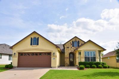 Denton Single Family Home For Sale: 11709 Southerland Drive