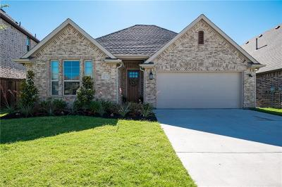 Fort Worth Single Family Home For Sale: 10116 Warberry Trail