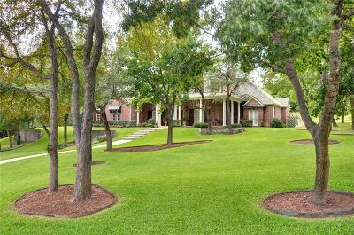 Parker County Single Family Home Active Kick Out: 100 Crested Elm Court