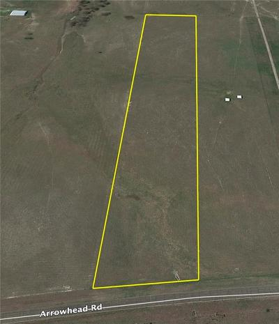 Waxahachie Residential Lots & Land For Sale: 12 Ac Arrowhead Road