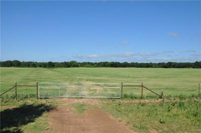 Dublin Farm & Ranch For Sale: County Road 367