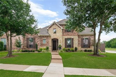 Plano Single Family Home For Sale: 4128 New Hope Court