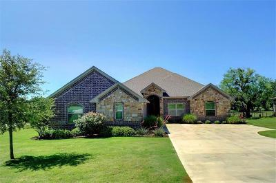Granbury Single Family Home For Sale: 1723 Rockview Drive