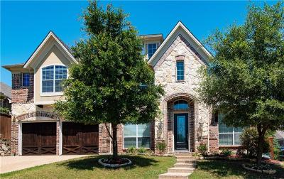 Irving Single Family Home For Sale: 10008 Bluewater Terrace