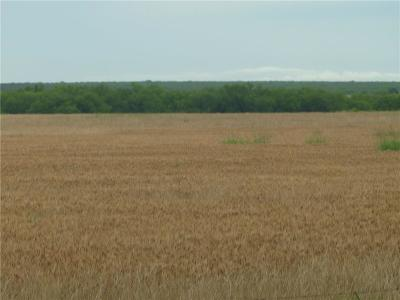 Throckmorton County Farm & Ranch For Sale: 0000 Fm 2356