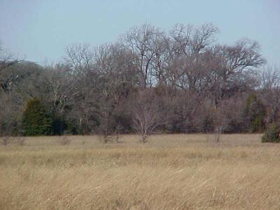 Waxahachie Residential Lots & Land For Sale: 00 Robinett Road
