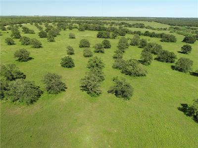 Jack County Residential Lots & Land For Sale: Tract 2 Hawthorn Road