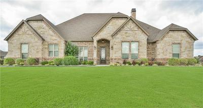 Weatherford Single Family Home For Sale: 216 Pinnacle Peak Lane