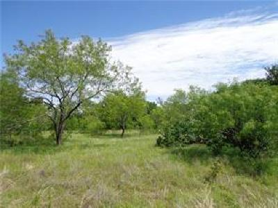 Wise County Residential Lots & Land For Sale: L378 Three Forks Crossing