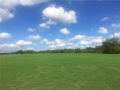 Collin County Residential Lots & Land For Sale: 1220 Willow Lane