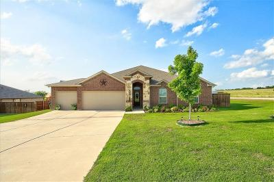 Nevada Single Family Home Active Contingent: 361 Amber Lane