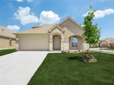 Little Elm Single Family Home For Sale: 1365 Rembrandt Drive