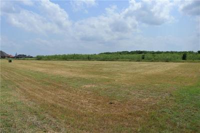 Grand Prairie Residential Lots & Land For Sale: 2903 Koscher Drive