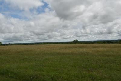 Brown County Farm & Ranch For Sale: 661 Fm 1467 S