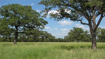 Mineral Wells Farm & Ranch For Sale: 01 Grimes Road