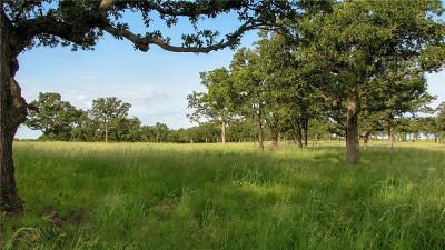 Mineral Wells Farm & Ranch For Sale: 02 Grimes Road