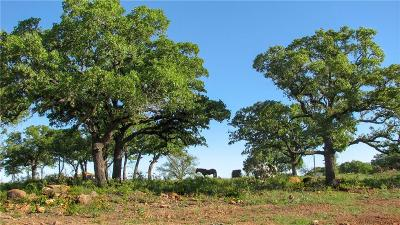 Mineral Wells Farm & Ranch For Sale: 03 Lamkin Road
