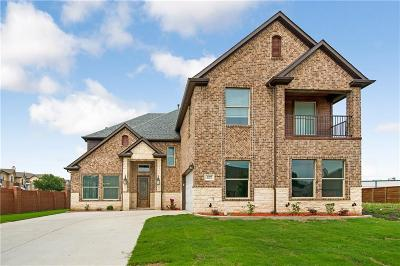 Mesquite Single Family Home For Sale: 2305 Amesbury Drive