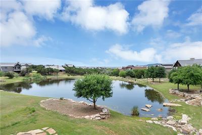 Palo Pinto County Single Family Home For Sale: 1671 Falls Creek Drive