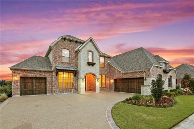 Tarrant County Single Family Home For Sale: 1223 Blue Lake Boulevard