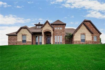 Tarrant County Single Family Home For Sale: 12224 Bella Dio Drive