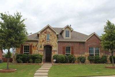 Allen Single Family Home For Sale: 1036 Balmorhea Drive