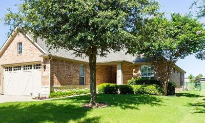 Frisco Single Family Home For Sale: 7519 Spruce Creek Lane