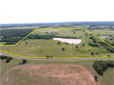 Montague County Farm & Ranch For Sale: 0000 Fm 1815