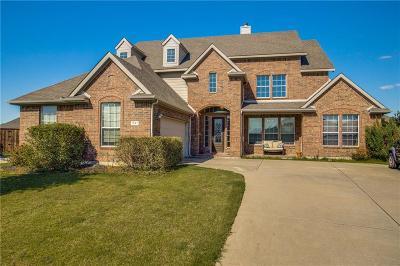 Prosper Single Family Home For Sale: 291 Wilson Drive