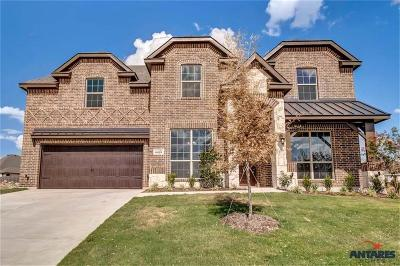Benbrook Single Family Home For Sale: 6829 Fire Dance Drive