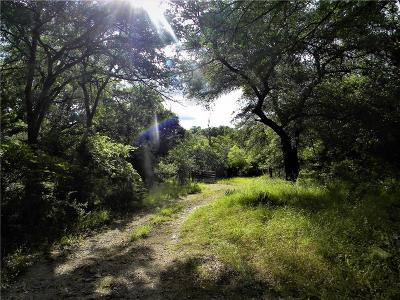 Parker County Residential Lots & Land For Sale: 120 Creek Front Court