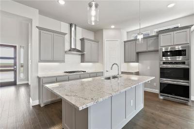 Frisco Single Family Home For Sale: 16471 Creek Plum Road