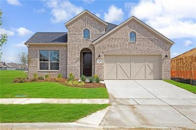 Little Elm Single Family Home For Sale: 1149 Cottonseed