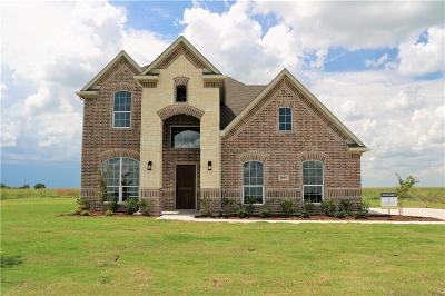 Johnson County Single Family Home For Sale: 10957 Soft Shell Drive