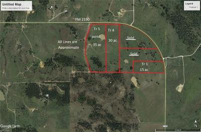 Jack County Farm & Ranch For Sale