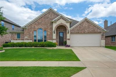 Little Elm Single Family Home Active Option Contract: 2436 Hammock Lake Drive