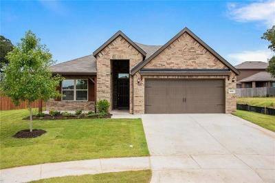 Weatherford Single Family Home For Sale: 1036 Deer Valley Drive
