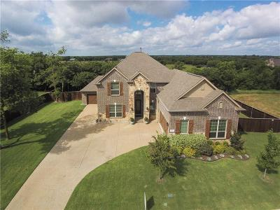Rockwall Single Family Home For Sale: 1339 Arezzo Lane