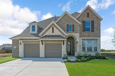Flower Mound Single Family Home For Sale: 3704 Birch Wood Court