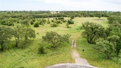 Weatherford Farm & Ranch For Sale: 126 Rona Lane
